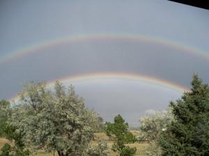 Tilda's Rainbow?